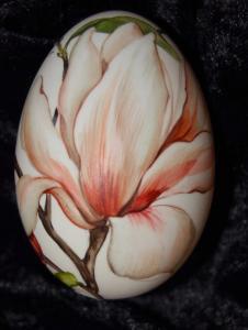 11. Magnolie