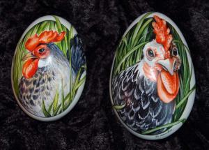 2. Hühnerportraits