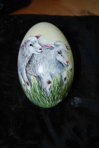 8. Schafe